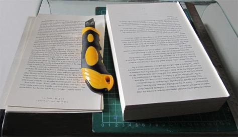 bookblasphemy