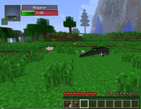 5-alligator