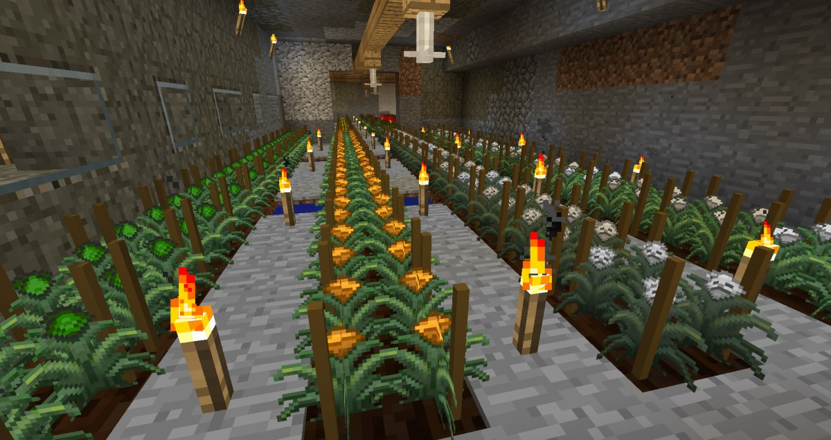 regrowth8