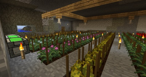 Minecraft How To Build A Pressure Chamber
