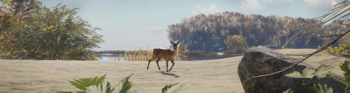 lake_deer