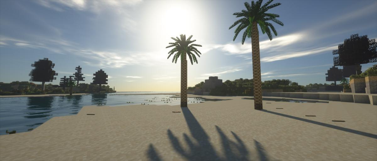 tfc-palms